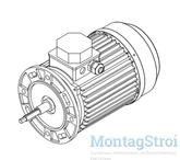 Электро двигатель насоса COLORADO 4 кВт MT106067
