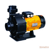 Центробежный насос для аттракционов серии BTP2200S  Без предфильтра 40 м3/ч, Н=10, 230 В, 2,2 кВт